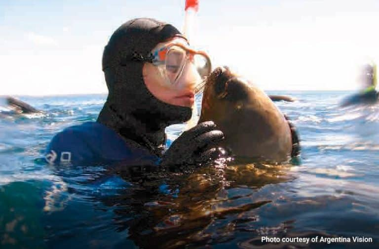 Snorkelling-with-Sea-Lions-in-Puerto-Madryn-01-min