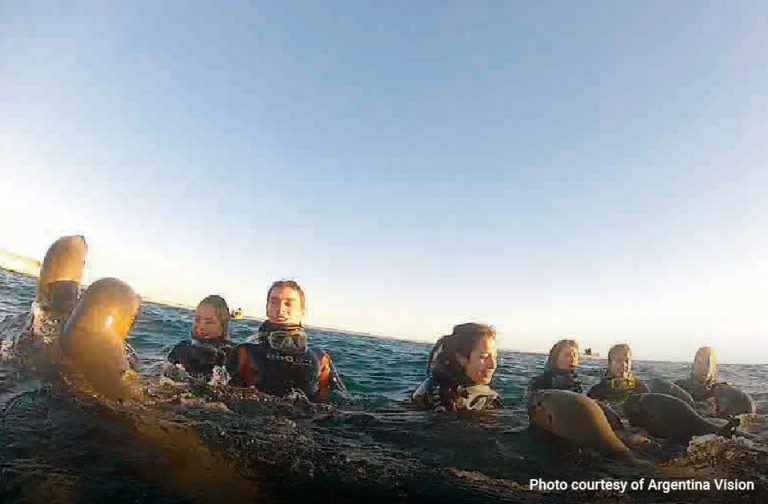 Snorkelling-with-Sea-Lions-in-Puerto-Madryn-03-min