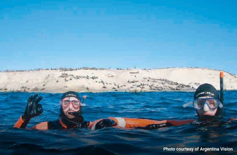 Snorkelling-with-Sea-Lions-in-Puerto-Madryn-04-min