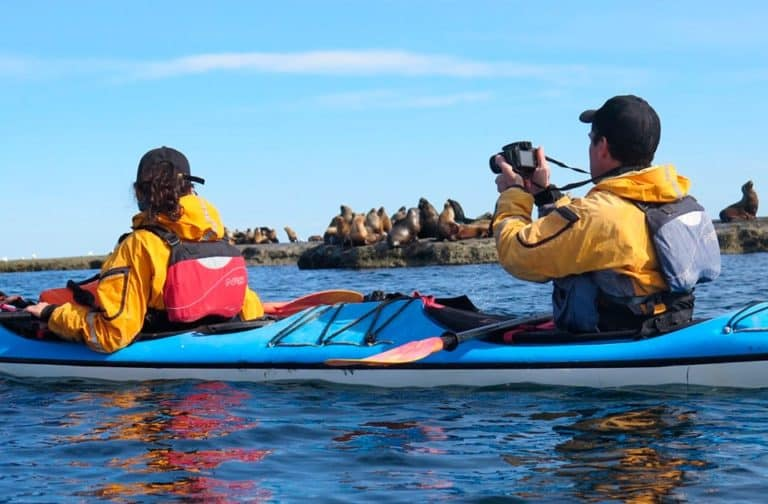 Discover-kayaking-puerto-madryn-gallery-01-min