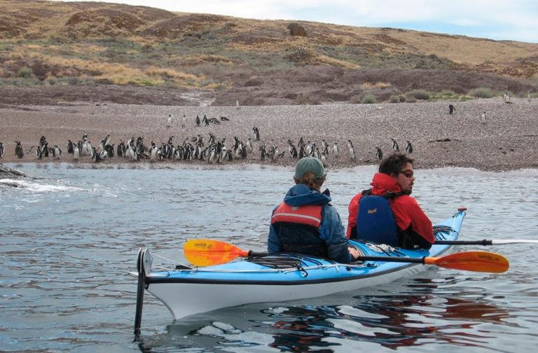 Discover-kayaking-puerto-madryn-gallery-05-min