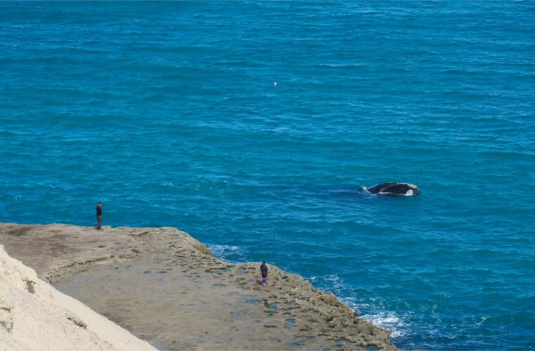 Exploring-San-Jose-Gulf--Villarino-Beach-03-min