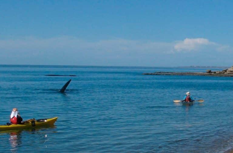 Exploring-San-Jose-Gulf--Villarino-Beach-06-min