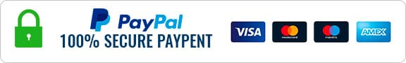 Payment Segurity Paypal